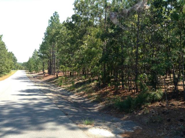 48 Woodland Circle, Foxfire, NC 27281 (MLS #182032) :: Weichert, Realtors - Town & Country
