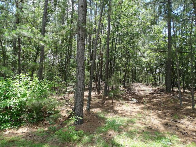 15 Bee Tree Ln, Wagram, NC 28396 (MLS #182602) :: Pinnock Real Estate & Relocation Services, Inc.