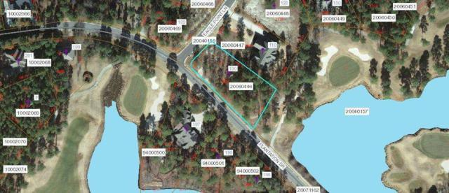 100 Eagle Point Lane, Southern Pines, NC 28387 (MLS #182809) :: Pinnock Real Estate & Relocation Services, Inc.