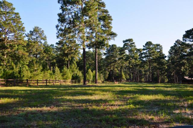 415 Tremont Street, Southern Pines, NC 28387 (MLS #182906) :: Weichert, Realtors - Town & Country