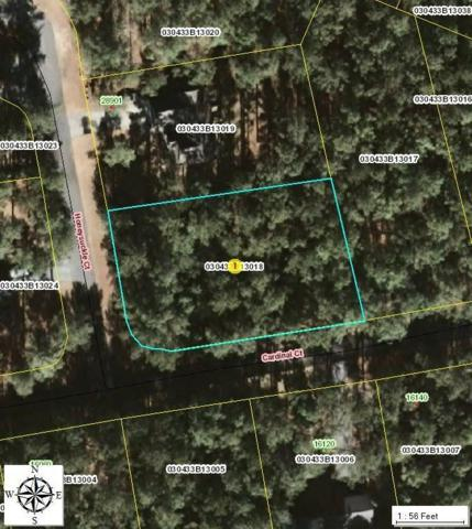 18 Honeysuckle Court, Wagram, NC 28396 (MLS #183651) :: Pinnock Real Estate & Relocation Services, Inc.