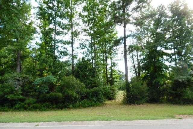 37 Westchase Run, Sanford, NC 27330 (MLS #183730) :: Weichert, Realtors - Town & Country