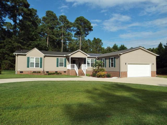 479 Ridgeview Dr, Cameron, NC 28326 (MLS #183768) :: Pinnock Real Estate & Relocation Services, Inc.