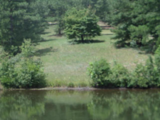 138 Gails Road, West End, NC 27376 (MLS #183789) :: Pinnock Real Estate & Relocation Services, Inc.