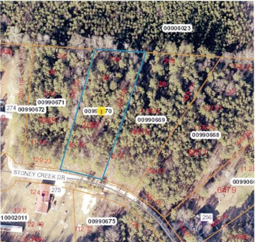 Lot 29 Stoney Creek Drive, Carthage, NC 28327 (MLS #184438) :: Weichert, Realtors - Town & Country
