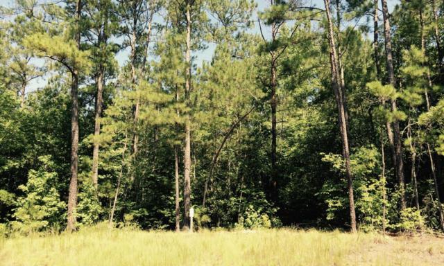 Tbd North State Lane, Rockingham, NC 28379 (MLS #185167) :: Weichert, Realtors - Town & Country