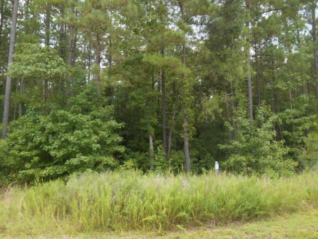 283 Riverhills Trail, Rockingham, NC 28379 (MLS #185355) :: Weichert, Realtors - Town & Country