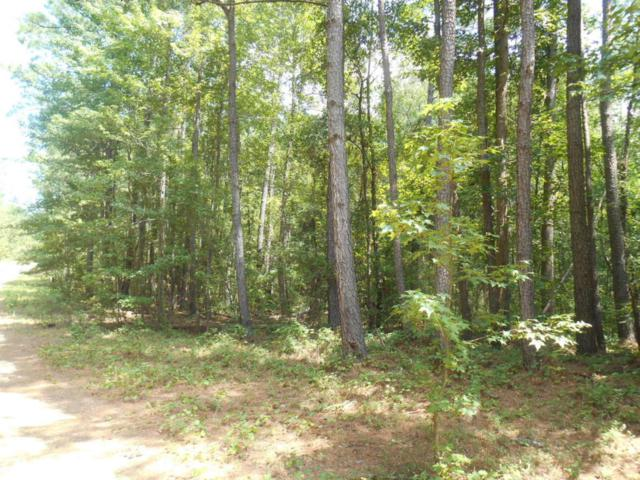 245 Lakeview Pass, Rockingham, NC 28379 (MLS #185357) :: Weichert, Realtors - Town & Country