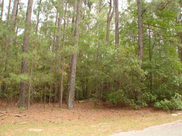 15 Titmouse Court, Wagram, NC 28396 (MLS #185656) :: Pinnock Real Estate & Relocation Services, Inc.