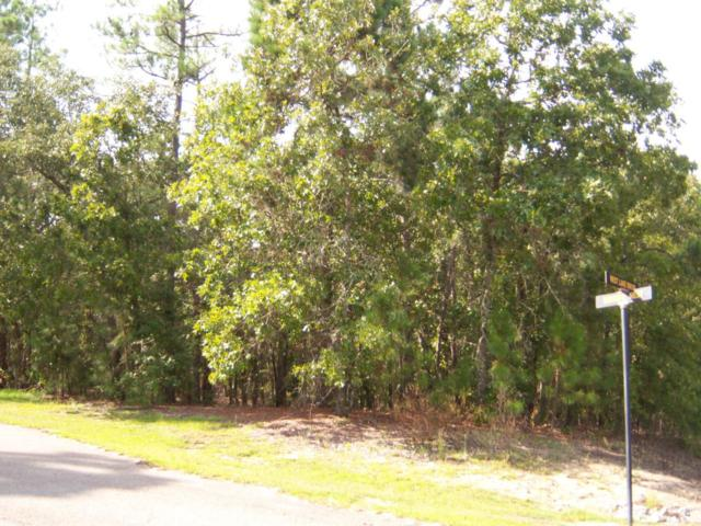 21 Westlake Drive, Wagram, NC 28396 (MLS #185862) :: Pinnock Real Estate & Relocation Services, Inc.