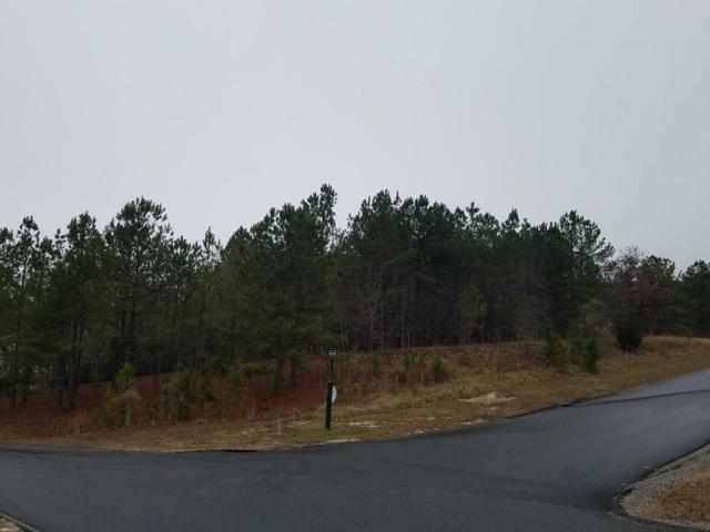 109 Ruby Ridge, West End, NC 27376 (MLS #186140) :: Weichert, Realtors - Town & Country