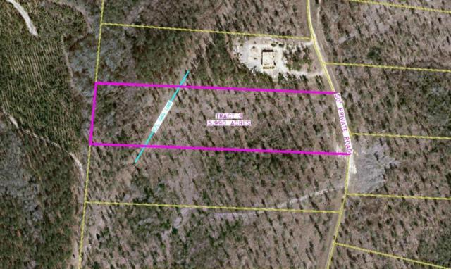 178 Arrowhead Trail, Rockingham, NC 28379 (MLS #186190) :: Weichert, Realtors - Town & Country