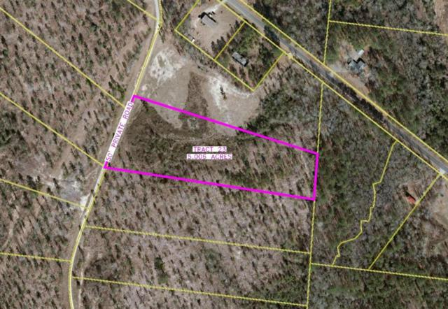 131 Arrowhead Trail, Rockingham, NC 28379 (MLS #186203) :: Weichert, Realtors - Town & Country
