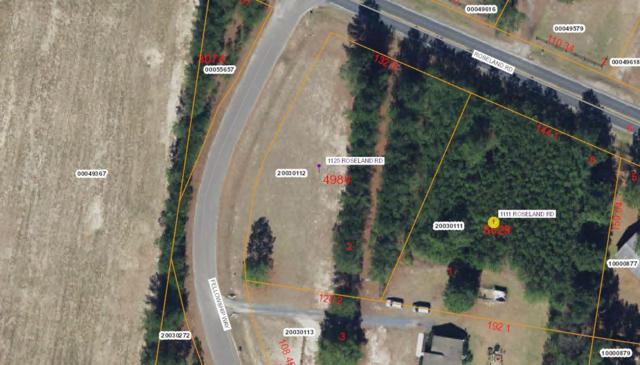 1125 Roseland Road, Aberdeen, NC 28315 (MLS #186625) :: Weichert, Realtors - Town & Country