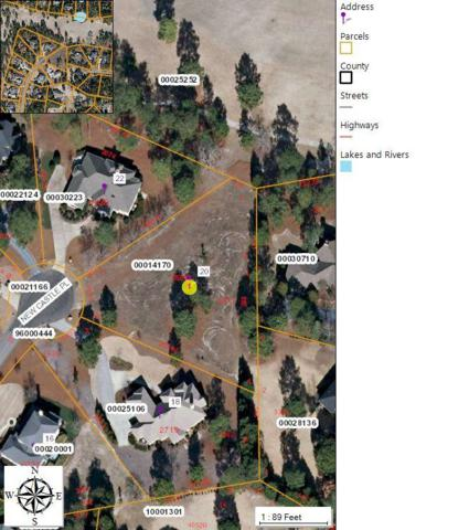 20 New Castle Place, Pinehurst, NC 28374 (MLS #186919) :: Weichert, Realtors - Town & Country