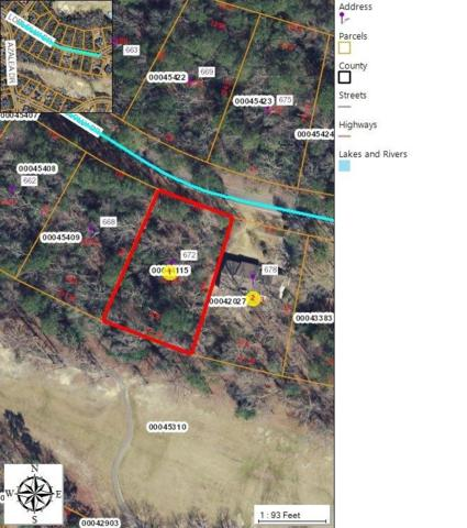 672 Loblolly Drive, Woodlake, NC 28394 (MLS #187849) :: Weichert, Realtors - Town & Country