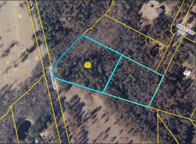 8350 Calloway Road, Aberdeen, NC 28315 (MLS #188197) :: Pinnock Real Estate & Relocation Services, Inc.