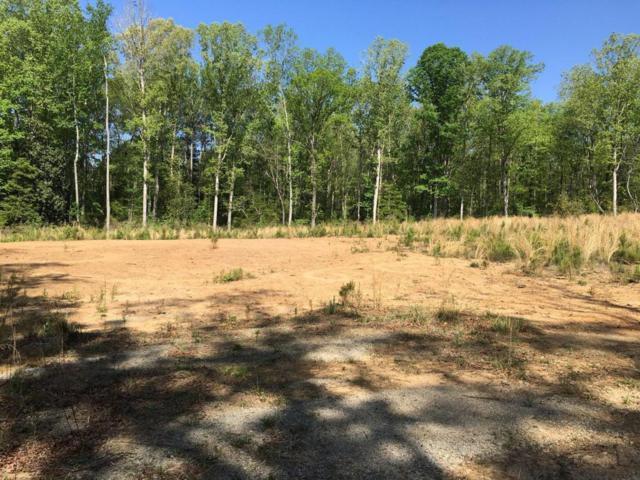 160 Lakeside Drive, Rockingham, NC 28379 (MLS #188228) :: Weichert, Realtors - Town & Country