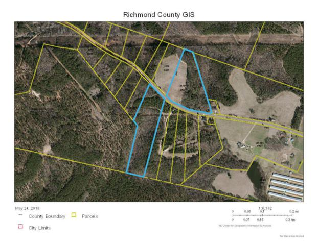 Tbd Horseshoe Road, Rockingham, NC 28379 (MLS #188547) :: Weichert, Realtors - Town & Country