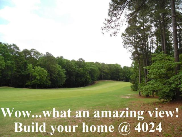 4024 Kitten Cove Cove, Sanford, NC 27332 (MLS #188669) :: Weichert, Realtors - Town & Country