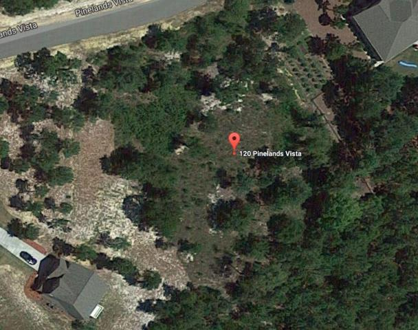 120 Pinelands, Jackson Springs, NC 27281 (MLS #188967) :: Weichert, Realtors - Town & Country