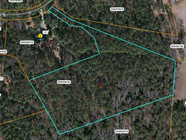 Tbd N Bethesda Road, Southern Pines, NC 28387 (MLS #188998) :: Weichert, Realtors - Town & Country