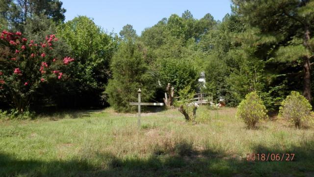 121 Meadow Lane, Hoffman, NC 28347 (MLS #189156) :: Weichert, Realtors - Town & Country