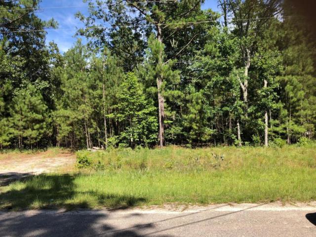 159 Creek Bend Drive Drive, Vass, NC 28394 (MLS #189367) :: Pinnock Real Estate & Relocation Services, Inc.
