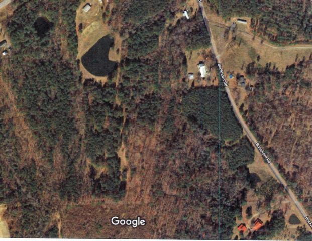 262 Buckhorn Road, Moncure, NC 27559 (MLS #190922) :: Pinnock Real Estate & Relocation Services, Inc.