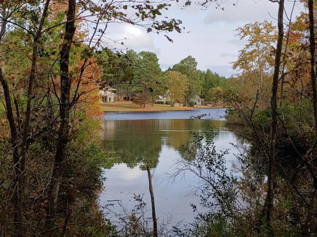 6 Brassie Circle, Foxfire, NC 27281 (MLS #191171) :: Towering Pines Real Estate