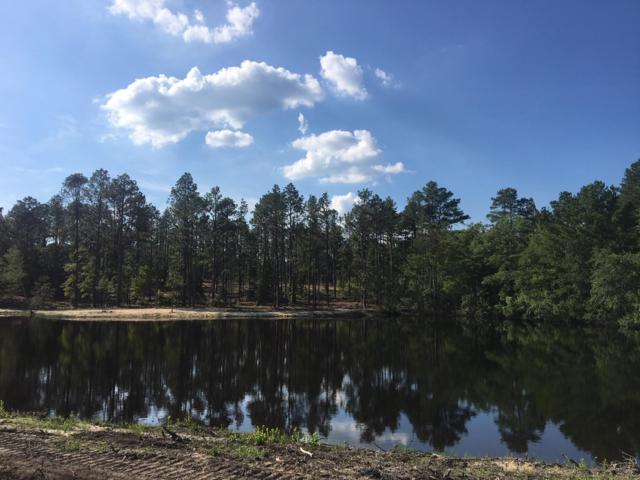 4075 Carthage Road, West End, NC 27376 (MLS #195314) :: Pinnock Real Estate & Relocation Services, Inc.