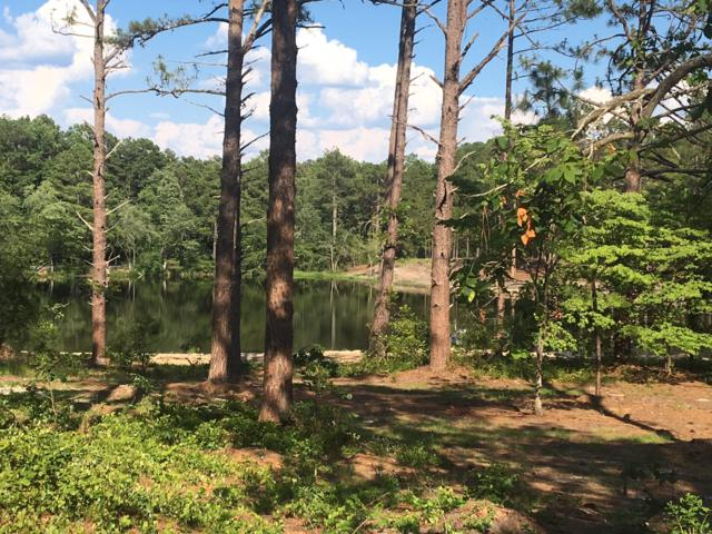 4179 Carthage Road, West End, NC 27376 (MLS #195316) :: Pinnock Real Estate & Relocation Services, Inc.