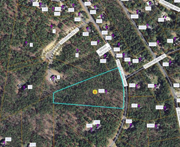 550 E Hedgelawn Way, Southern Pines, NC 28387 (MLS #195750) :: Pinnock Real Estate & Relocation Services, Inc.