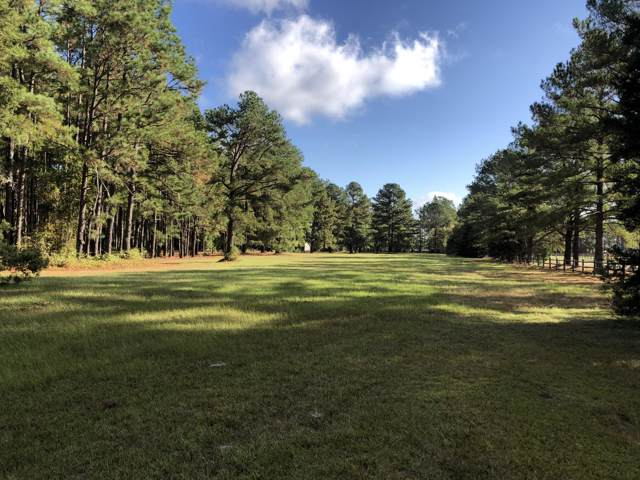 2214 Youngs Road, Vass, NC 28394 (MLS #197003) :: Towering Pines Real Estate
