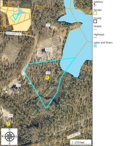 145 Natures Trail, Aberdeen, NC 28315 (MLS #197156) :: Pinnock Real Estate & Relocation Services, Inc.