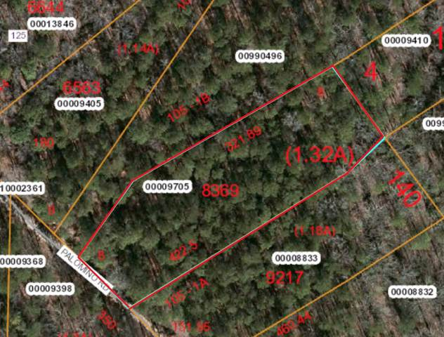 Lot 105-1B Palomino Dr, Carthage, NC 28327 (MLS #197409) :: Pinnock Real Estate & Relocation Services, Inc.