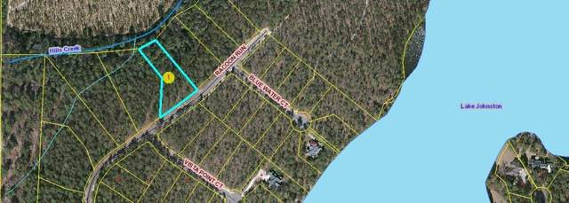 Tbd Raccoon Run, Wagram, NC 28396 (MLS #197580) :: Pinnock Real Estate & Relocation Services, Inc.