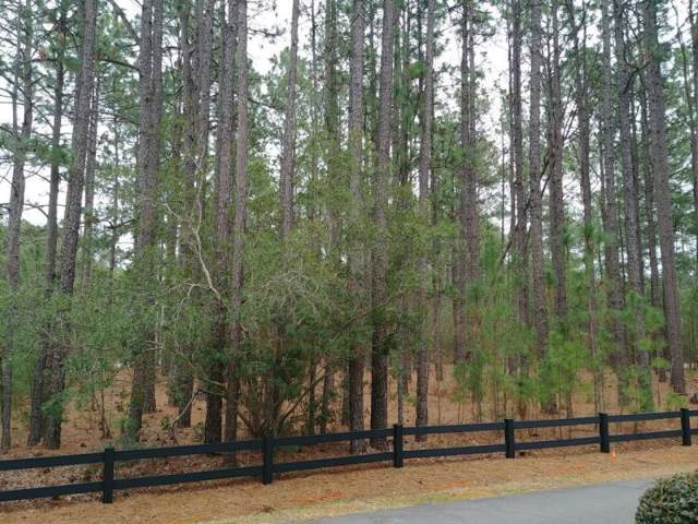 Tbd Peach Orchard Road, Wagram, NC 28396 (MLS #197641) :: Pinnock Real Estate & Relocation Services, Inc.