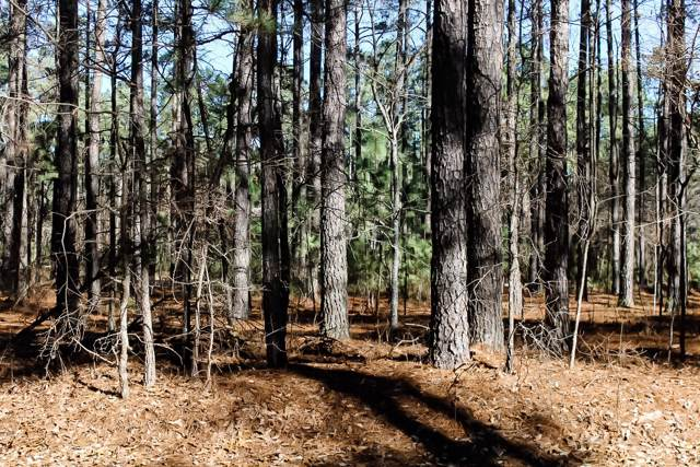 Lot 21 Old Orchard Court, Wagram, NC 28396 (MLS #197666) :: Pinnock Real Estate & Relocation Services, Inc.