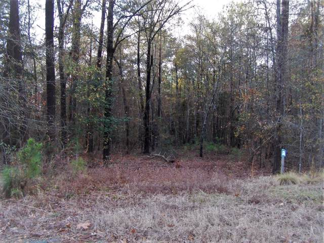 Tbd North State Lane #63, Rockingham, NC 28379 (MLS #197838) :: Towering Pines Real Estate