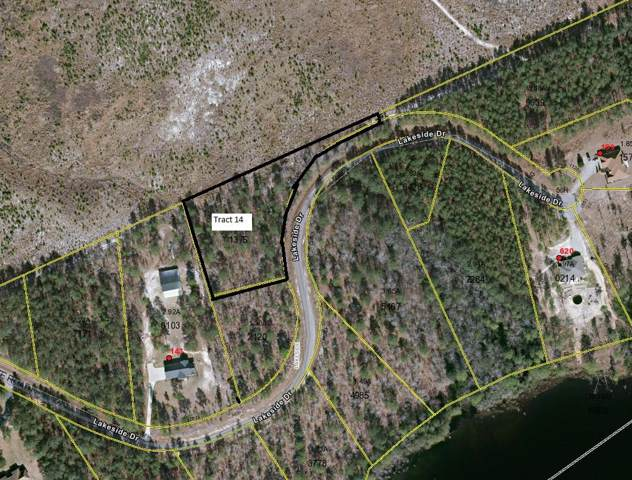Tbd Lakeside Drive, Marston, NC 28363 (MLS #198137) :: Pinnock Real Estate & Relocation Services, Inc.