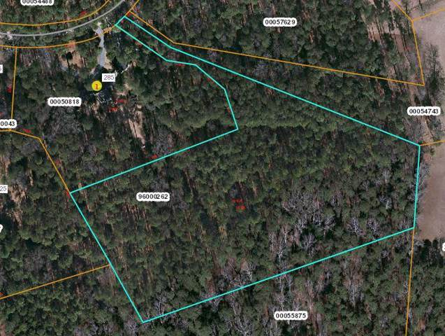 Tbd N Bethesda Road, Southern Pines, NC 28387 (MLS #198229) :: Pines Sotheby's International Realty