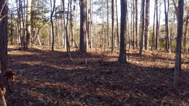 Tbd Hwy 22 Mc Neill Street, Carthage, NC 28327 (MLS #198236) :: Pinnock Real Estate & Relocation Services, Inc.