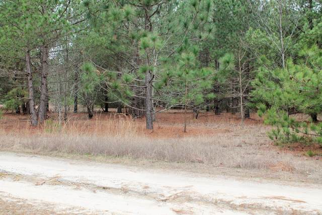 246 Split Rail Road, Whispering Pines, NC 28327 (MLS #198789) :: Pinnock Real Estate & Relocation Services, Inc.