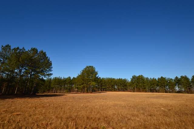 105 Foxwood Close Road, Cameron, NC 28326 (MLS #198790) :: Pinnock Real Estate & Relocation Services, Inc.