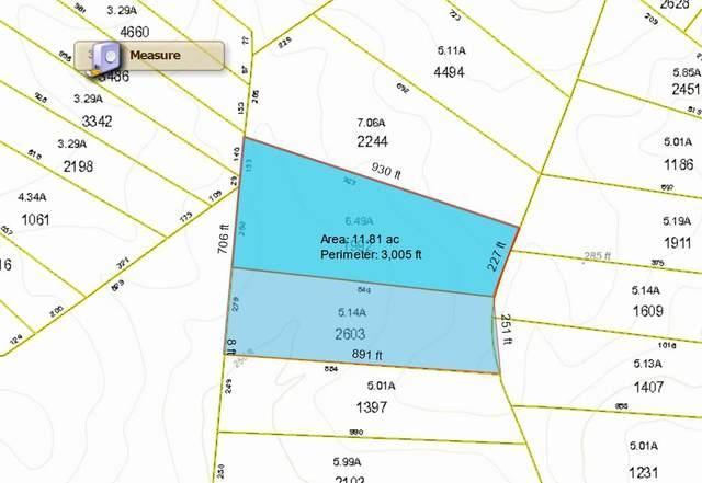 Tbd Arrowhead Trail, Rockingham, NC 28379 (MLS #198844) :: Pinnock Real Estate & Relocation Services, Inc.