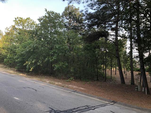 101 Beacon Ridge Drive, West End, NC 27376 (MLS #198885) :: Pinnock Real Estate & Relocation Services, Inc.