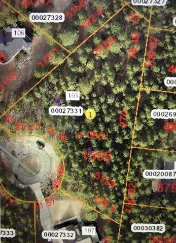 103 Woodcock Court, West End, NC 27376 (MLS #198972) :: Pinnock Real Estate & Relocation Services, Inc.