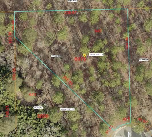 103 Gilbert Court, Pinehurst, NC 28374 (MLS #199391) :: Pinnock Real Estate & Relocation Services, Inc.