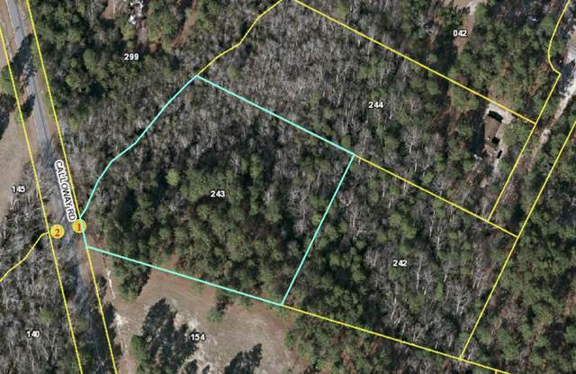 8350 Calloway Road, Aberdeen, NC 28315 (MLS #199631) :: Pinnock Real Estate & Relocation Services, Inc.